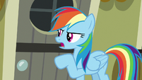 "Rainbow Dash ""something is wrong!"" S7E18"