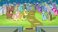 Rainbow Dash pleads her case S4E22