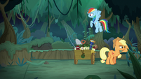 Rainbow and Applejack looking for Fluttershy S8E13