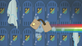 Rainbow speeds off without her saddle bags S6E24.png