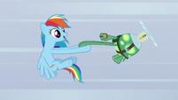 S05E05 Tank i Rainbow Dash