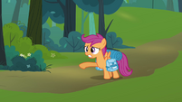 Scootaloo en escurcion