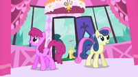 Sweetie Drops and Berryshine enter Rarity's boutique S1E20