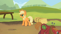 Big McIntosh's cutie mark sparkling S2E5