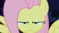 Fluttershy about to do the stare S1E17