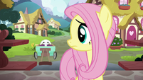 Fluttershy looking back at sad Angel S7E5