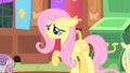 Fluttershy raising her hoof S01E17.png