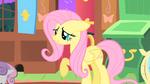 Fluttershy raising her hoof S01E17