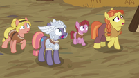 MH mare and villagers looking at Rockhoof S7E16