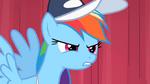 "Rainbow Dash ""So the final"" S2E07"