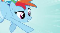 Rainbow Dash -those trees- S05E05