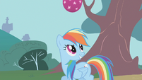 Rainbow Dash smiling about bouncing ball S1E7