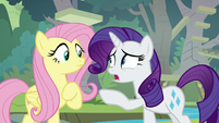 "Rarity ""it's serious"" S8E4"