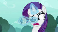 Rarity unable to read the instructions S8E11