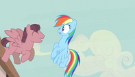 Red stallion singing to Rainbow Dash S5E1