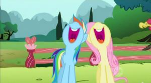 S02E07 Duet śpiewacki Rainbow i Fluttershy