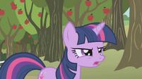 Twilight Sparkle frustrated S01E04
