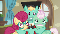 Zephyr, Mr. Shy, and Mrs. Shy look toward Fluttershy S6E11