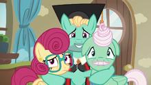 Zephyr, Mr. Shy, and Mrs. Shy look toward Fluttershy S6E11