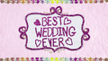 """""""Best Wedding Ever"""" text in felt BFHHS1.png"""