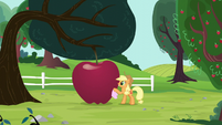 Applejack polishing a giant apple S5E13