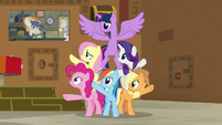 Attendant Pony interrupts the Mane Six S7E2