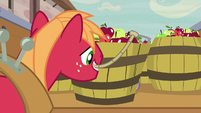 Big McIntosh picking up a barrel of apples S7E8