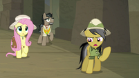 "Daring Do thinking ""not yet!"" S9E21"