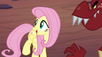 "Fluttershy ""looks to me like"" S9E9"