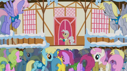 Mayor, Let's get galloping! S1E11