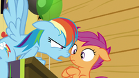 "Rainbow Dash ""I could ask you the same"" S8E20"