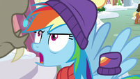 "Rainbow Dash ""she's Fluttershy!"" MLPBGE"