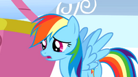 Rainbow Dash wishes she could have met the Wonderbolts when they were awake S1E16