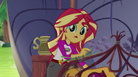 Sunset Shimmer --that was weird back there-- EG4