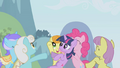The ponies throwing Twilight up in the air S1E3.png