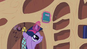 Twilight Sparkle reshelf books 5 S02E10