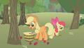 Applejack picking up apples S1E12.png