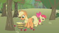 Applejack picking up apples S1E12.png