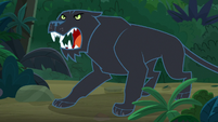 Black jaguar jumps out of the bushes S9E21