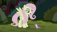 "Fake Fluttershy ""you tried to fly out of the nest"" S8E13"