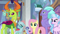 Fluttershy, changelings, and Hippogriffs listen to Twilight S8E1.png