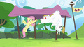 Fluttershy and Bulk practicing baton pass S4E10.png