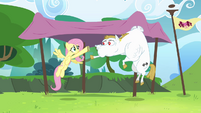Fluttershy and Bulk practicing baton pass S4E10