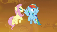 Fluttershy and RD look up at Wonderbolts S9E2