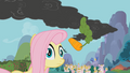Fluttershy hit by carrot S1E7.png