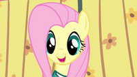 Fluttershy the fifth Ponytone S4E14