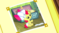 Foal Apple Bloom photo S2E23