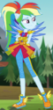 Rainbow Dash Crystal Wings form ID EG4