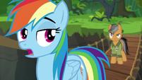 Rainbow Dash mocking Quibble Pants S6E13
