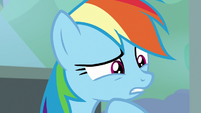 Rainbow wondering about the Washouts S8E20
